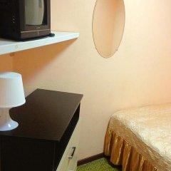 Мини-отель Лира Стандартный номер с различными типами кроватей фото 4