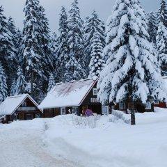 Отель Ski Chalet Borovets спортивное сооружение