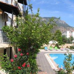 Pasha Apart Hotel Турция, Калкан - отзывы, цены и фото номеров - забронировать отель Pasha Apart Hotel онлайн бассейн фото 3