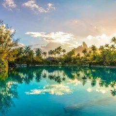 Отель The St Regis Bora Bora Resort фото 3