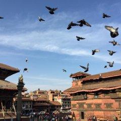 Отель Traditional Homes - Swotha Непал, Лалитпур - отзывы, цены и фото номеров - забронировать отель Traditional Homes - Swotha онлайн приотельная территория