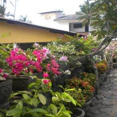 Отель A-Prima Hotel Шри-Ланка, Калутара - отзывы, цены и фото номеров - забронировать отель A-Prima Hotel онлайн