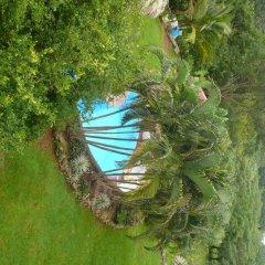 Отель Colibri Hill Resort Гондурас, Остров Утила - отзывы, цены и фото номеров - забронировать отель Colibri Hill Resort онлайн приотельная территория