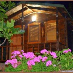Montenegro Motel Стандартный номер с различными типами кроватей фото 2