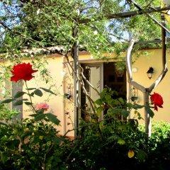 Отель La Mia Diletta Oasi Италия, Сан-Грегорио-ди-Катанья - отзывы, цены и фото номеров - забронировать отель La Mia Diletta Oasi онлайн фото 12