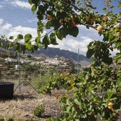 Отель EcoTara Canary Islands Eco-Villa Retreat