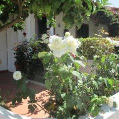 Отель Casa Do Limoeiro фото 4
