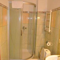 Гостиница Вилла Татьяна на Верхнеозёрной Стандартный номер с различными типами кроватей фото 6