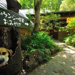Отель Yamabiko Ryokan Минамиогуни приотельная территория
