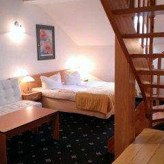 Hotel Máchova 3* Люкс с различными типами кроватей фото 4