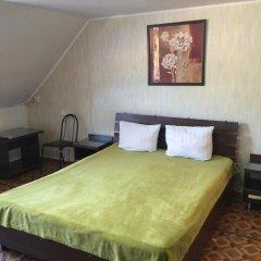 Гостиница Руслан Стандартный номер с двуспальной кроватью фото 3