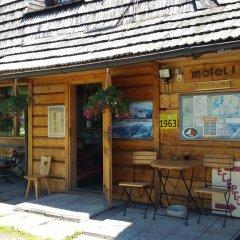 Отель Camping Harenda Pokoje Gościnne i Domki Стандартный номер фото 4