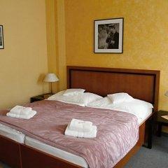 Отель Pension-Apartmany Cesky Dvur удобства в номере
