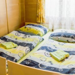 Отель Chalets Vitkova Hora Карловы Вары удобства в номере фото 2