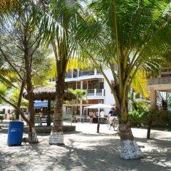 Отель Sherwood Гондурас, Тела - отзывы, цены и фото номеров - забронировать отель Sherwood онлайн фото 2