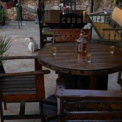 Отель Villa M Cako Албания, Ксамил - отзывы, цены и фото номеров - забронировать отель Villa M Cako онлайн бассейн