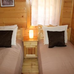 Отель Ski Chalet Borovets комната для гостей фото 3