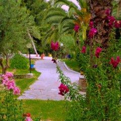 Отель Porfi Beach Hotel Греция, Ситония - 1 отзыв об отеле, цены и фото номеров - забронировать отель Porfi Beach Hotel онлайн парковка