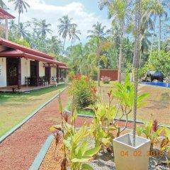 Отель Coco Cabana Шри-Ланка, Бентота - отзывы, цены и фото номеров - забронировать отель Coco Cabana онлайн фото 6