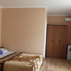 Гостевой Дом Аэросвит Стандартный номер с двуспальной кроватью