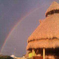 Hotel La Casa de Nery Луизиана Ceiba приотельная территория фото 2