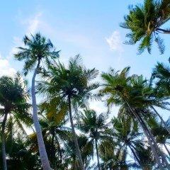 Отель Amvoj Maldives Thulusdhoo Остров Гасфинолу пляж