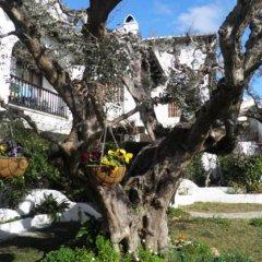 Отель Luxury Costa Dorada –Alorda Park фото 2