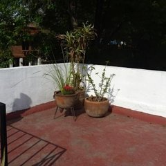 Апартаменты Sunflower Apartment near Coyoacan District Мехико
