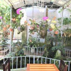 Отель Hijal House балкон