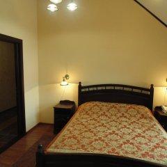Гостиница Гостиный двор Алтай Номер Делюкс с различными типами кроватей фото 5