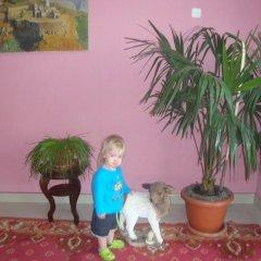 Отель Mira с домашними животными