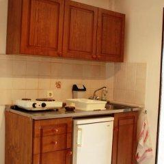Апартаменты Iliostasi Beach Apartments 2* Студия с различными типами кроватей фото 6