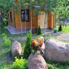 Отель Forest Court Могилёв фото 7