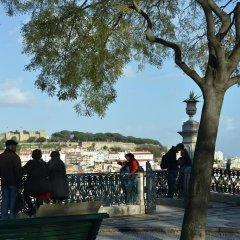 Отель Portugal Exclusive Homes - Apostolos