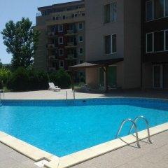 Отель Studio Stella Polaris Болгария, Солнечный берег - отзывы, цены и фото номеров - забронировать отель Studio Stella Polaris онлайн бассейн