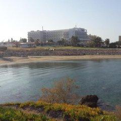 Отель Villa Doris Кипр, Протарас - отзывы, цены и фото номеров - забронировать отель Villa Doris онлайн приотельная территория фото 2