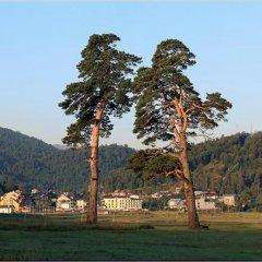 Отель Villa Mtashi фото 7