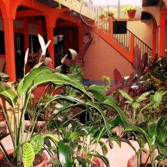 Hotel & Hostal Yaxkin Copan фото 7