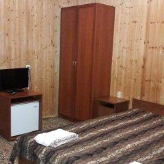 Гостиница Adel Hotel на Домбае отзывы, цены и фото номеров - забронировать гостиницу Adel Hotel онлайн Домбай комната для гостей фото 3