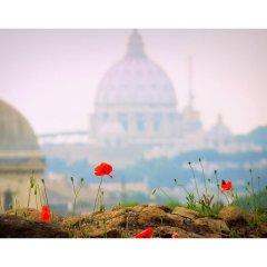 Отель Rome Luxury Rental - Vicolo Palle фото 3
