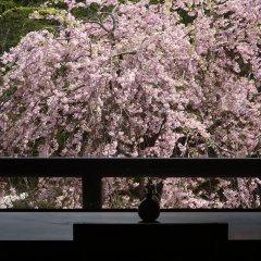 Hotel Itamuro Насусиобара балкон