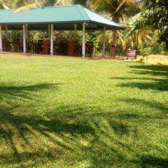 Отель Rajarata Lodge Шри-Ланка, Анурадхапура - отзывы, цены и фото номеров - забронировать отель Rajarata Lodge онлайн фото 6