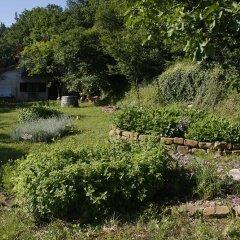 Отель Farm stay Domačija Butul фото 5