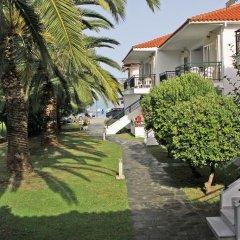 Отель Miramare Hotel Греция, Ситония - отзывы, цены и фото номеров - забронировать отель Miramare Hotel онлайн фото 4