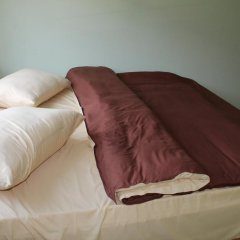Отель GN Guest House Армения, Дилижан - отзывы, цены и фото номеров - забронировать отель GN Guest House онлайн комната для гостей фото 5