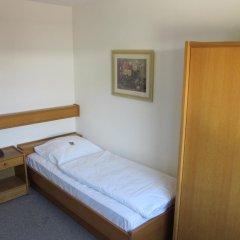 Hotel Waldesruh 2* Стандартный номер с различными типами кроватей