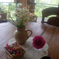 Отель Guest House Anakhit Армения, Иджеван - отзывы, цены и фото номеров - забронировать отель Guest House Anakhit онлайн фото 3