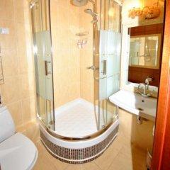 Гостиница Ананас Стандартный номер разные типы кроватей фото 10