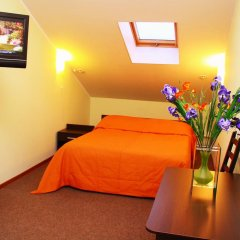 Гостиница Ирис 3* Номер Комфорт разные типы кроватей фото 8