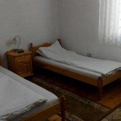 Отель Tsvetkovi Guest House Болгария, Банско - отзывы, цены и фото номеров - забронировать отель Tsvetkovi Guest House онлайн комната для гостей фото 2